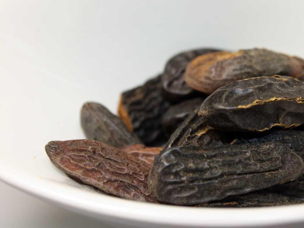 essbare Tonkabohne für Desserts & Parfüm