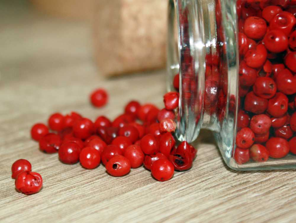 Roter Pfeffer - fruchtig-süße Beere als Duftbaustein in Parfüm