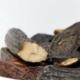 Beschreibung der Duftnote Tonka in Parfüm und wofür Tonkabohne verwendet wird